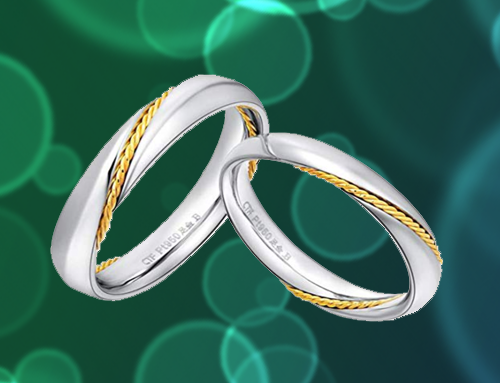MMGN – Platinum and Gold Interwoven Love Promise Rings